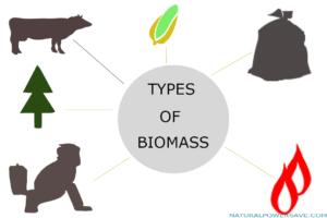 Biomass energy advantage and disadvantage