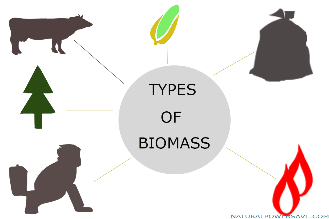 Biomass energy advantage and disadvantage