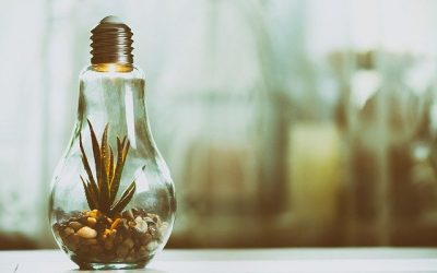 7 Ways of Conserving Energy at Home