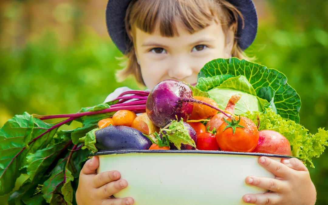 how to start sustainable living